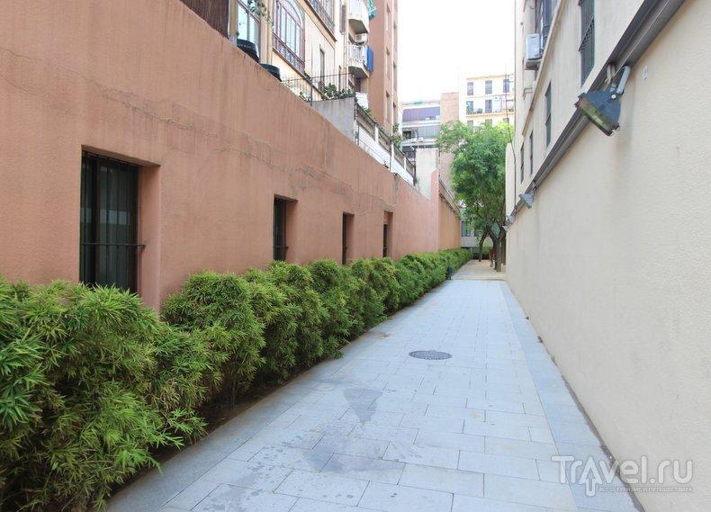 Барселона: тайные сады Эшампле / Испания