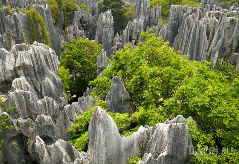 Лес и горы в Шилине / Китай