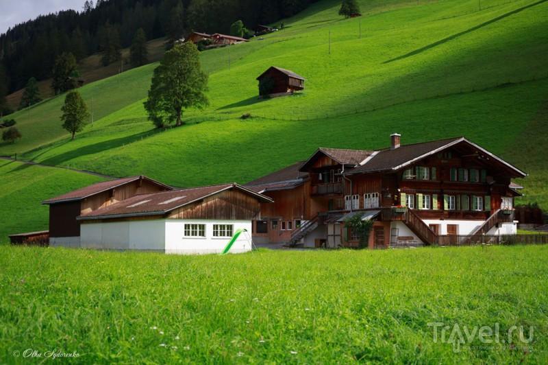 Швейцария. Долина Зимменталь (Simmental). Август 2014 / Фото из Швейцарии