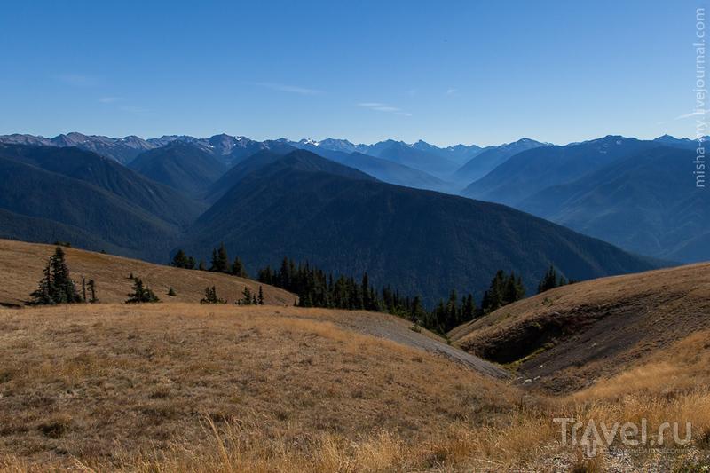 Национальный парк Olympic / Фото из США