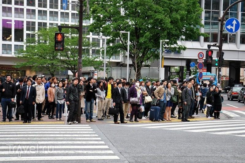 """""""Отель любви"""" в Токио / Япония"""