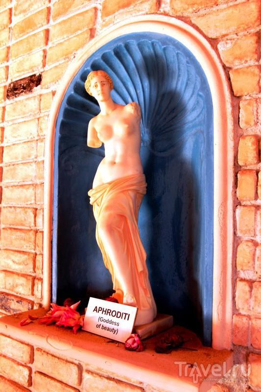 Памятник человечеству: музей Homo sapiens на о.Крит / Греция