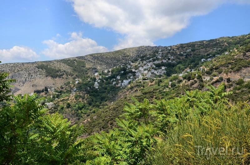 Пилио, гортензиевый (к)рай / Греция