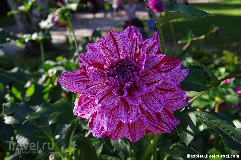 Parc Floral (Ботанический сад Парижа) / Франция