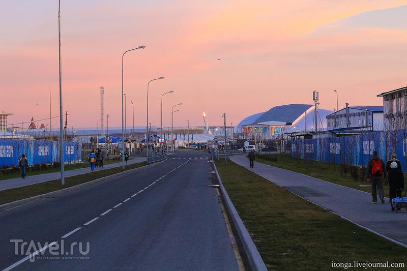 Адлер Олимпийский / Фото из России