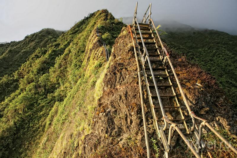 Тропа ведет на вершину утеса Кулау высотой 850 метров / США