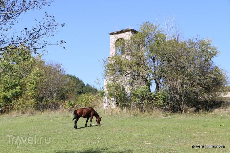 Церкви Воскопои / Албания