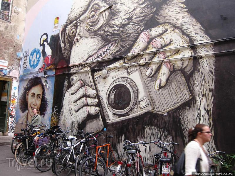 Берлинская находка: двор дома Шварценберг / Германия
