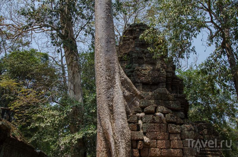 территорию храмового комплекса обслуживали почти 12 тысяч человек  / Камбоджа