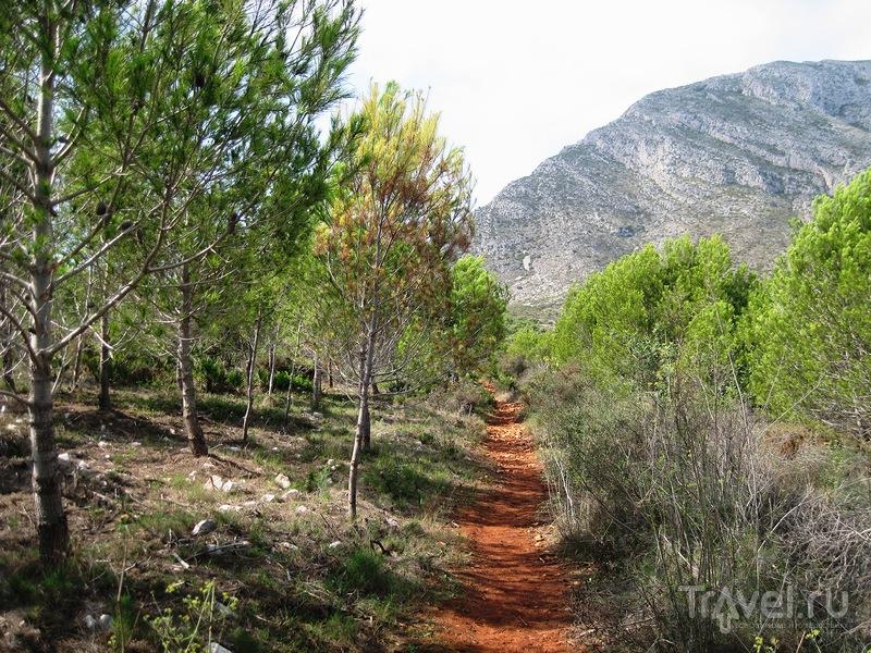 К подножию горы Монтго / Фото из Испании