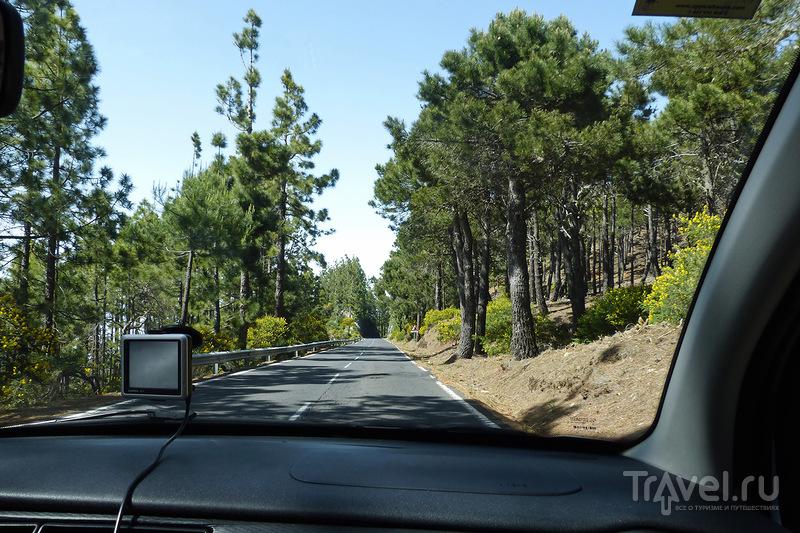 Тейде. Спуск к Ла-Лагуне / Фото из Испании