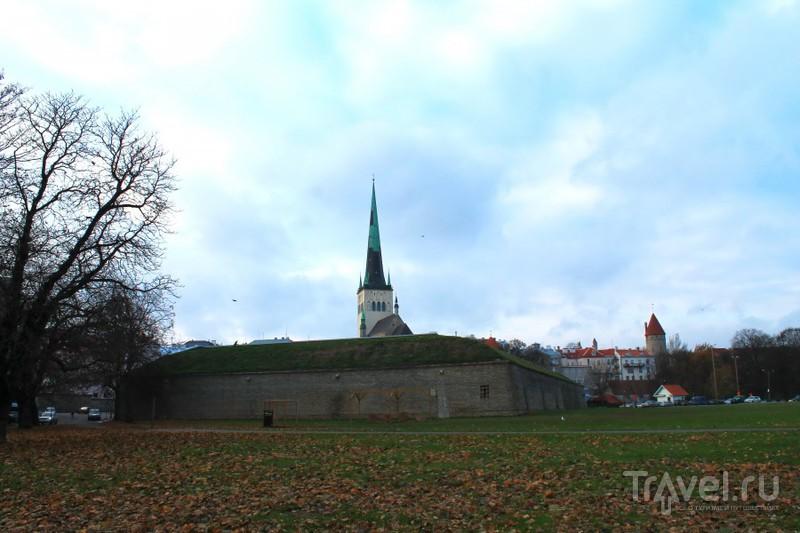 Таллин. Эстония / Эстония