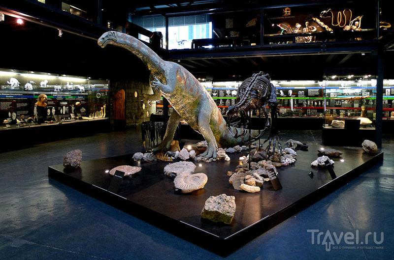 Музей Kulturama интересен и детям, и взрослым