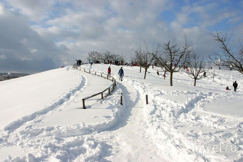 Настоящая зима в пригороде Цюриха