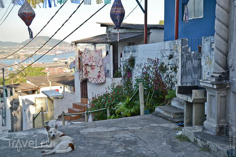 Бразилия: Сантус город кофе и Пеле! / Фото из Бразилии
