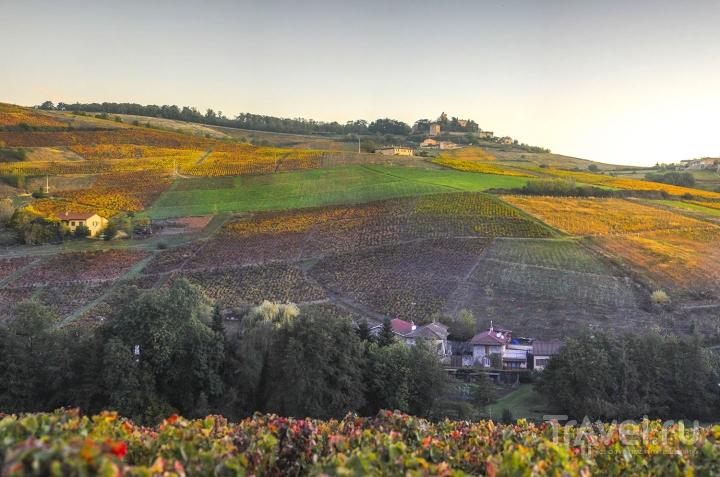 Франция. Винодельческий регион Божоле. Город Анси и немного Женевы / Швейцария
