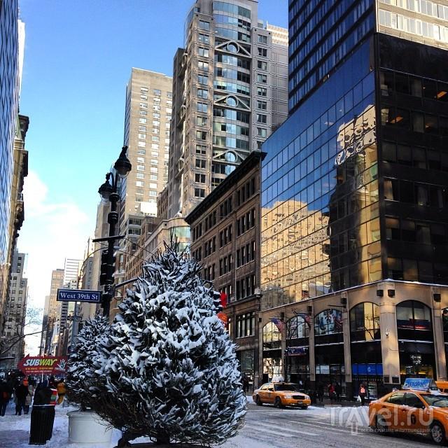 New York / США