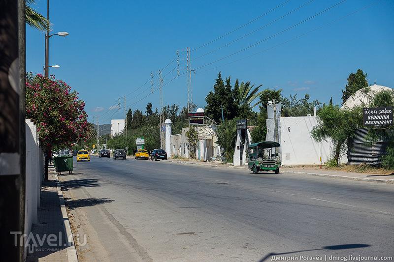 Хаммамет. Начало пути / Фото из Туниса