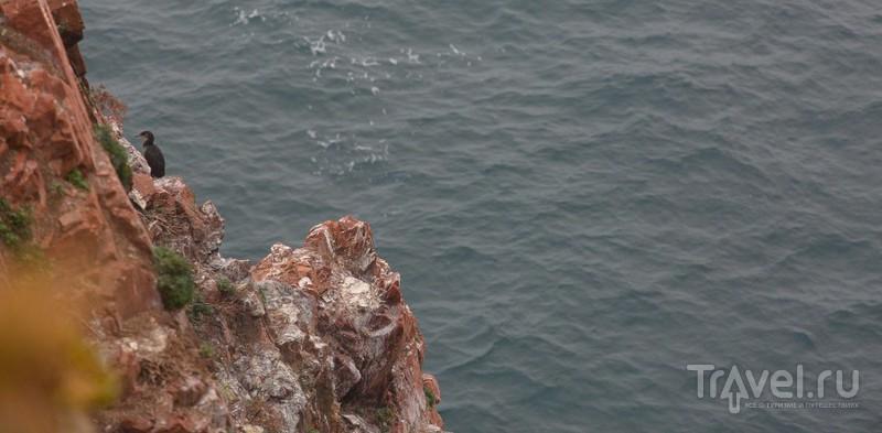 Остров Шкота