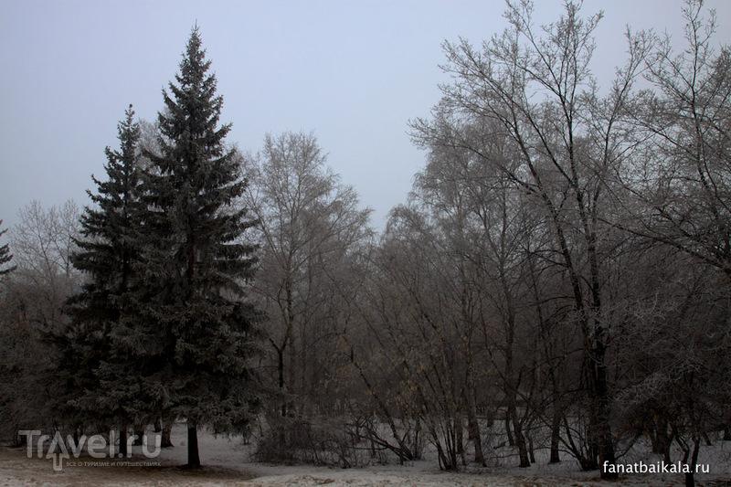 Сибирь. Белые одежды