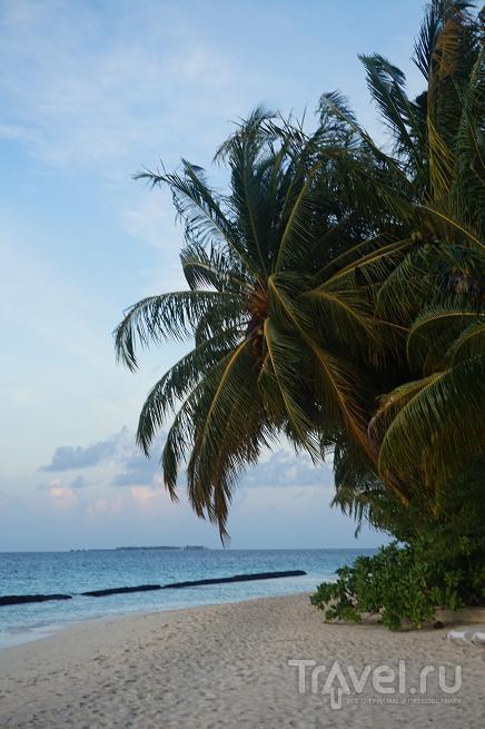 Мальдивы отель курамати