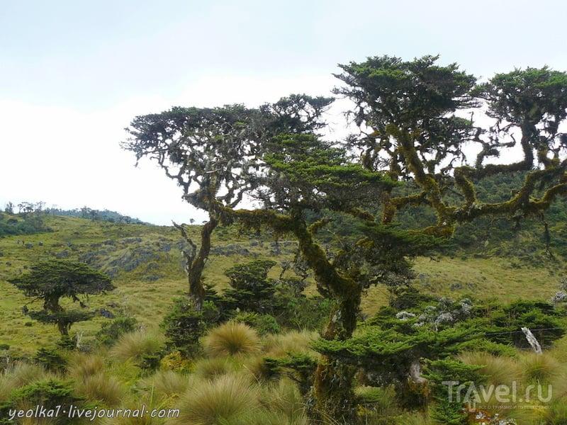 Un gran viaje a América del Sur. Перу. Амазонас. Возвращение из Лагуны Кондоров / Перу