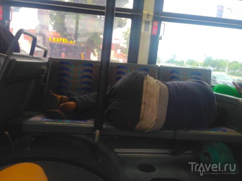 Необычный пассажир. Адский общественный транспорт Калифорнии / США