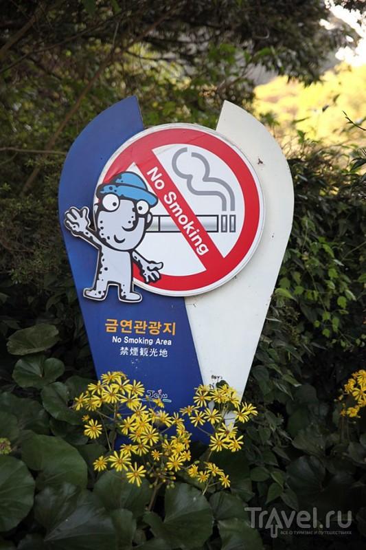 Корея. Заметки о Согипо / Южная Корея