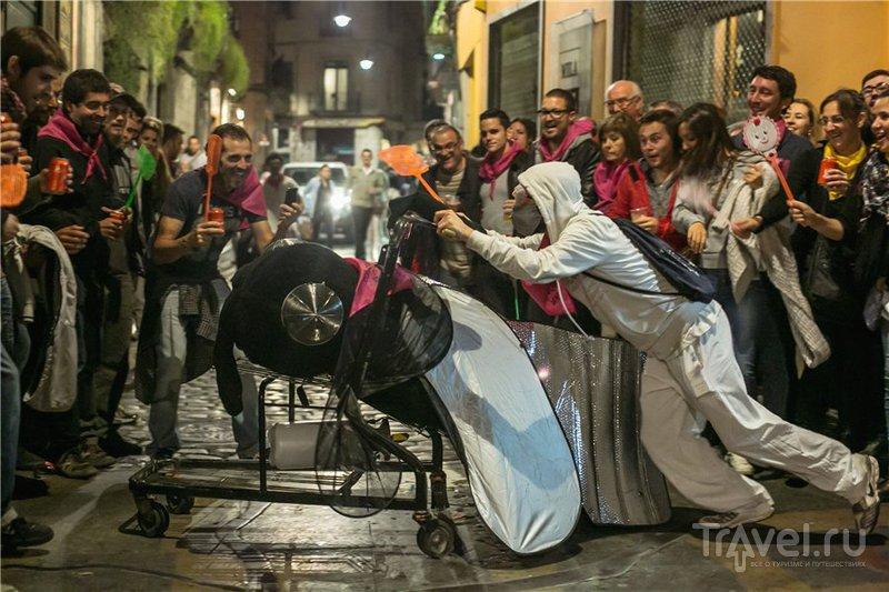 Мушиная коррида / Испания