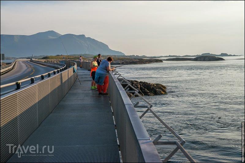 Around the Norge. Атлантическая дорога / Фото из Норвегии