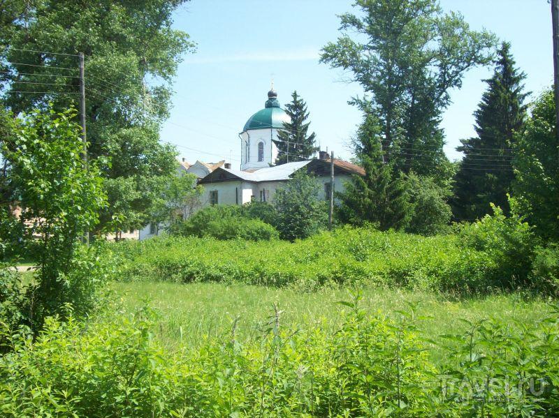 Вид на Толшевский монастырь