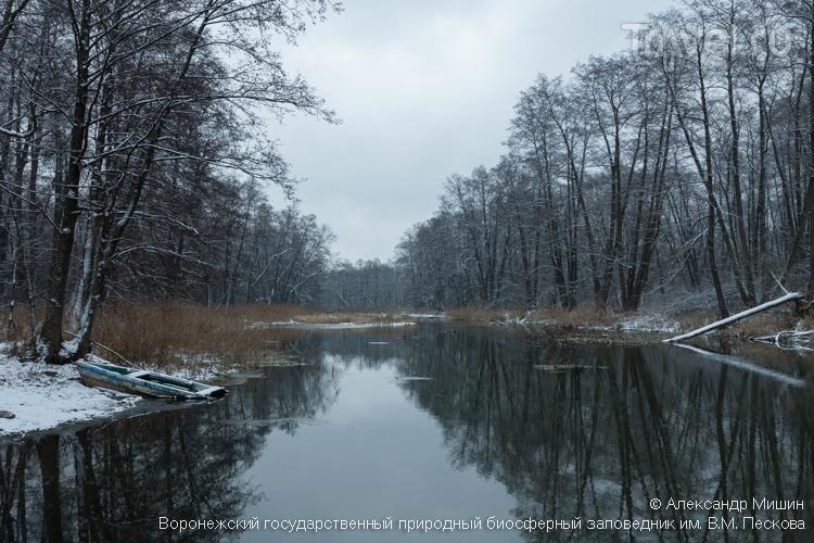 Водные просторы Воронежского биосферного заповедника