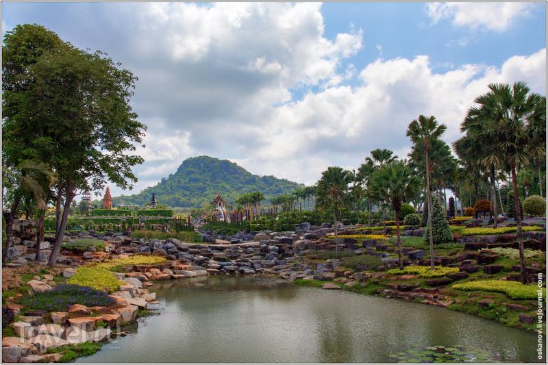 Тропический сад Нонг Нуч / Фото из Таиланда