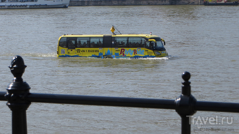 Дунайский автобус / Венгрия