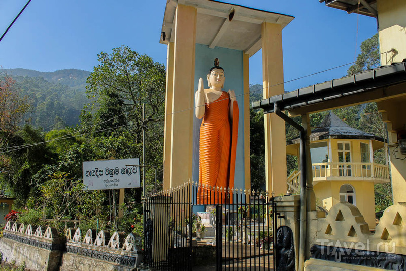 Восхождение на Пик Адама / Шри-Ланка