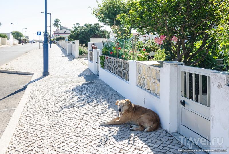 Уголки Сагреша / Португалия