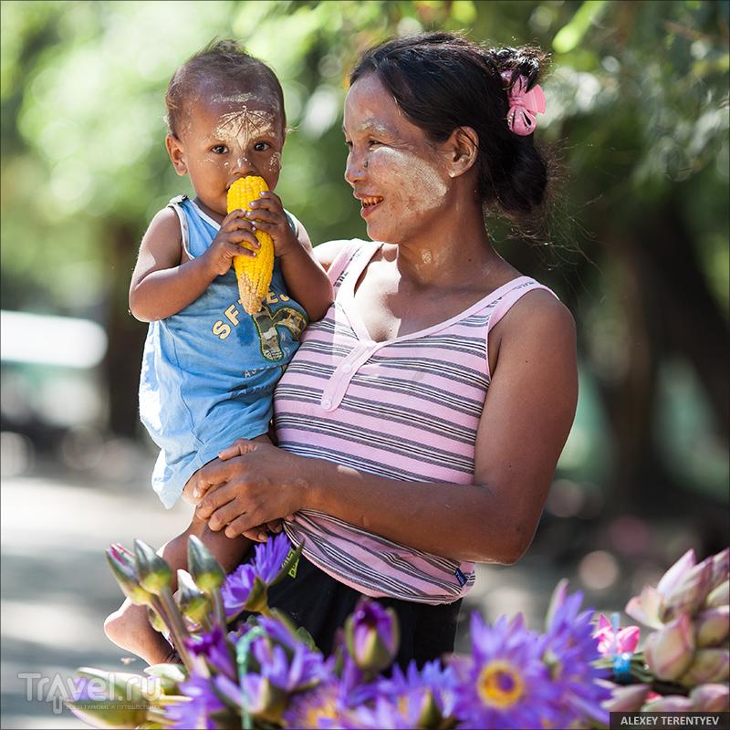 Мьянма... Люди / Мьянма