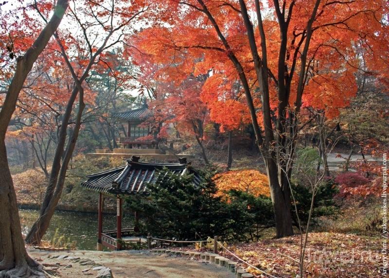 Секретный сад в Сеуле / Южная Корея