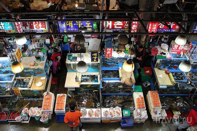 Рыбный рынок Noryangjin / Южная Корея