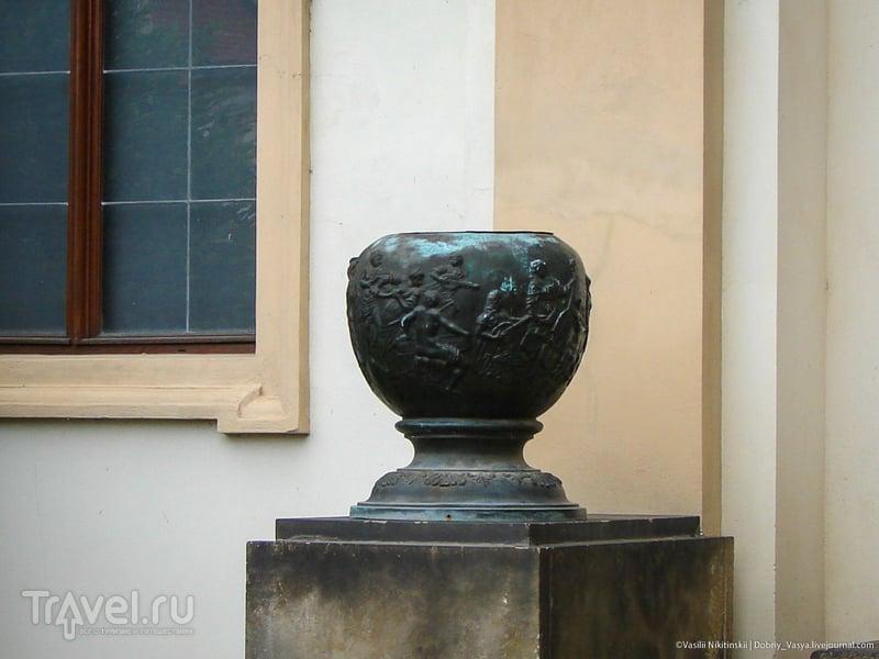 Прага: в саду с павлинами / Чехия