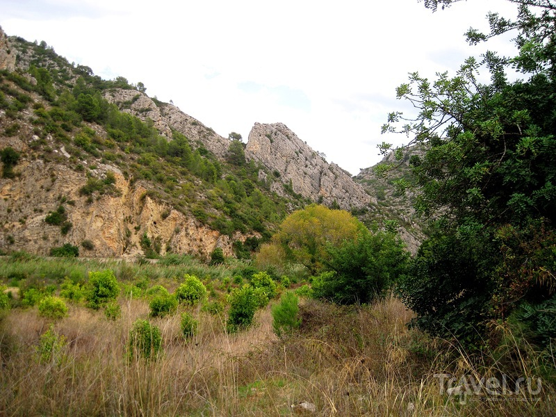 Природный парк Серпис / Фото из Испании