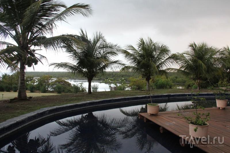 Бразильские каникулы в гостях у графа / Бразилия