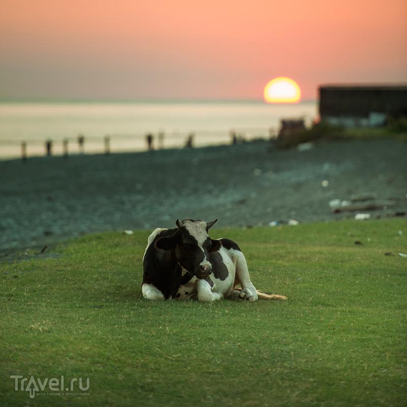 Один день в Абхазии / Фото из Абхазии