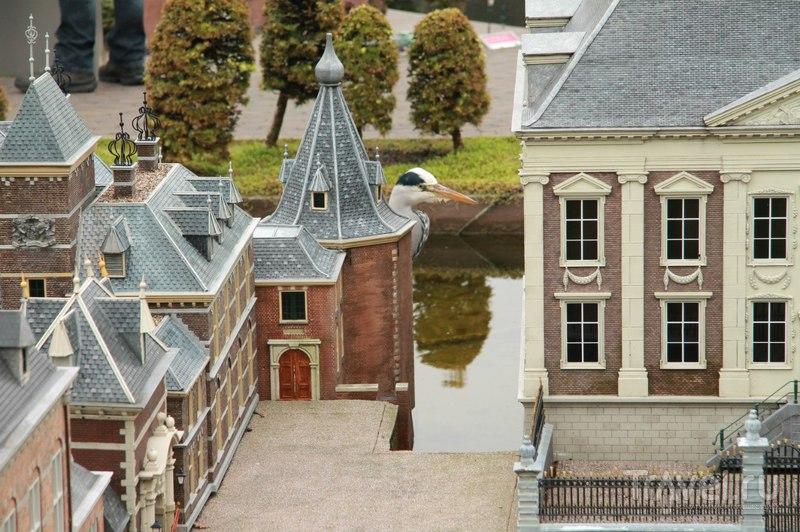 Как увидеть всю Голландию за один день? / Нидерланды