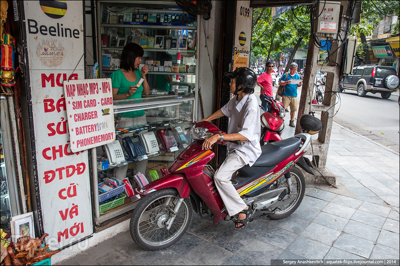 Ханойская паутина / Вьетнам