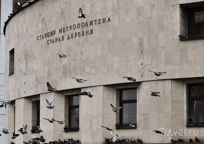 Кругосветка по Питеру / Россия