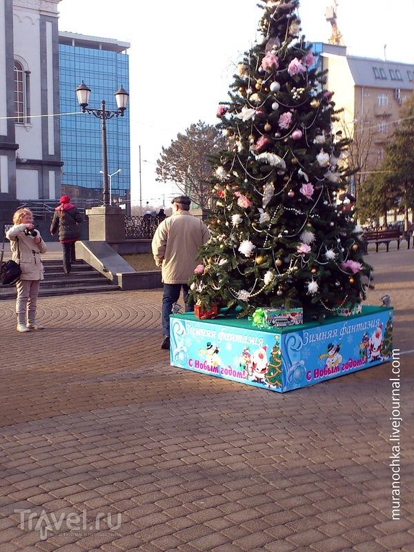 Парад необычных новогодних ёлок в Краснодаре / Россия