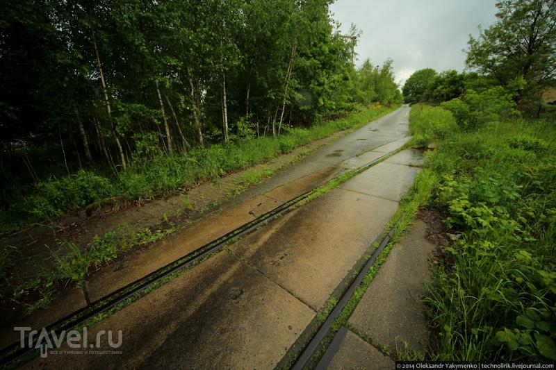 Прогулка под майским дождем / Германия