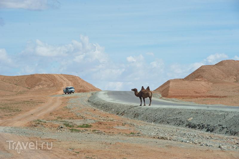 Монголия по кругу: одиночный авторейд. Центральная Монголия / Монголия