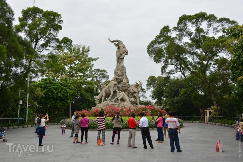 В поисках пяти козлов... / Фото из Китая